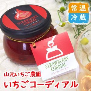 いちごコーディアル|yamamoto-ichigo15