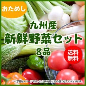 店長の旬の野菜厳選詰め合わせ 九州・山口産詰合せ※野菜の種類はシーズンにより変わります。 10度以下...