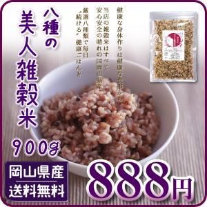 ポイント消化 美人七穀米900g 国産雑穀100%使用 大麦...