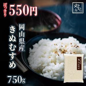 ポイント消化 お試し 新米 お米 安い 29年度岡山県産 食...