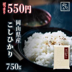 ポイント消化 お試し 新米 お米 安い 29年度岡山県産 ふ...