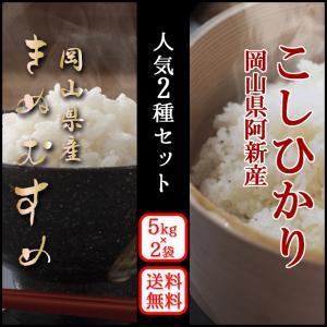 ギフト・贈答用に 人気お米食べ比べ2種セット(きぬむすめ・阿...
