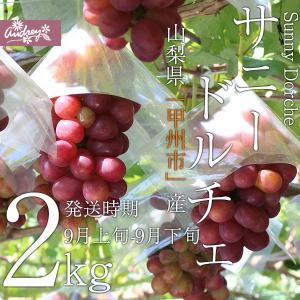 山梨の美味しいぶどう(サニードルチェ 2kg(3〜5房) (農家産直)(ギフト)(御中元)(葡萄)(山梨県)(フルーツ)|yamanasi