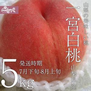 ご予約商品山梨の美味しい桃 一宮白桃5kg 15-16個入り (農家産直)(ギフト)(御中元)(桃)(山梨県)(フルーツ)|yamanasi