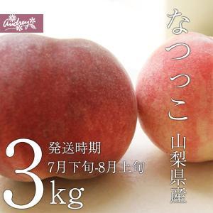 ご予約商品山梨の美味しい桃 なつっこ3kg 9-12個入り (農家産直)(ギフト)(御中元)(桃)(山梨県)(フルーツ)|yamanasi