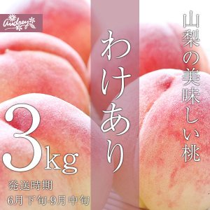 ご予約商品山梨の美味しい桃 わけあり3kg 9-16個入り (農家産直)(自宅用)(訳あり)(桃)(山梨県)(フルーツ)|yamanasi