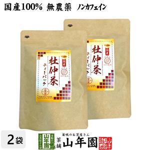 健康茶 国産100% 杜仲茶 国産 無農薬 長野県又は熊本県産 2g×30パック×2袋セット ティーバッグ ティーパック 送料無料ギフト