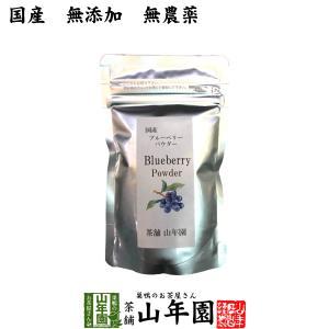 【国産】 ブルーベリー粉末 50g 送料無料