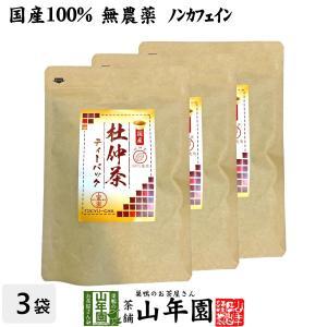 健康茶 国産100% 杜仲茶 国産 無農薬 長野県又は熊本県産 2g×30パック×3袋セット ティーバッグ ティーパック 送料無料ギフト