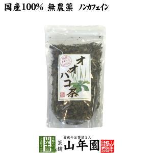 オオバコ茶 100g 国産 100% 無農薬 ノンカフェイン 宮崎県産 送料無料 お茶 敬老の日 2...