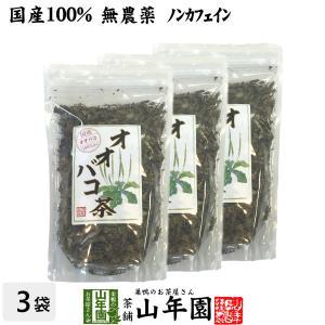 オオバコ茶 100g×3袋セット 国産 100% 無農薬 ノンカフェイン 宮崎県産 送料無料 お茶 ...