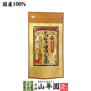 お茶 日本茶 ほうじ茶 とげぬきほうじ茶 ティーパック 掛川茶 3g×15パック ティーバッグ 送料...