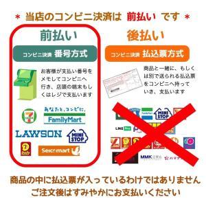 車いす用アンダーバッグ Lサイズ レッド すべり止めなし yamanekoyashop 09