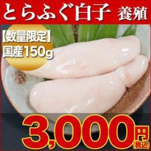 とらふぐ トラフグ とらふぐ白子 養殖 150g(2-3個) 同梱推奨品 下関 ふぐ 白子|yamanishisuisan