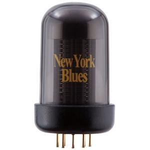 Roland Blues Cube New York Blues Tone Capsule BCTC-NY|yamano-gakki
