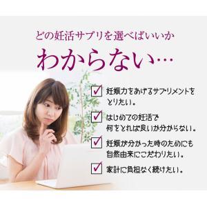 妊活サプリ sazucaさずか マカ 葉酸 マルチビタミン配合 妊活サプリメント 約1ヶ月分|yamano2|03