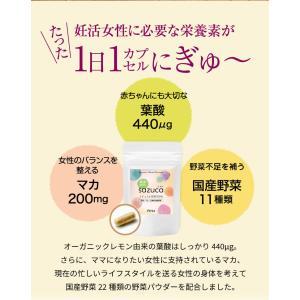 妊活サプリ sazucaさずか マカ 葉酸 マルチビタミン配合 妊活サプリメント 約1ヶ月分|yamano2|04