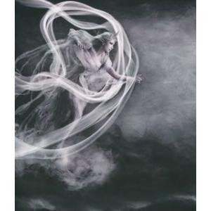 陰陽座/風神界逅