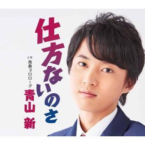 青山新「仕方ないのさ」|yamano