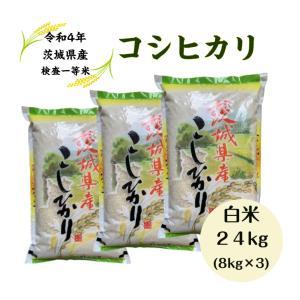 コシヒカリ 24kg 白米 (8kg×3) 29年「茨城産 ...