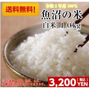 米 10kg「令和元年産 新潟のお得米 白米10kg」 送料無料