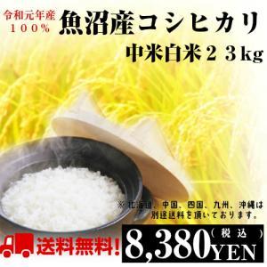 米 30kg 28年産「魚沼のお米 上中米 白米27kg」送...