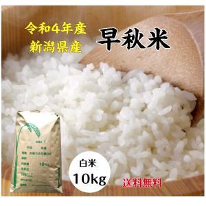 新米100% 28年 茨城産  早秋米  中米 白米 10kg  米 送料無料