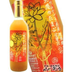 宮崎県の高級マンゴー「太陽のたまご」を使用した、まったり&リッチなフルーツ梅酒!!【 贈り物...