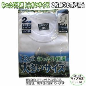 【3L〜6L】紳士長袖シャツ2枚組/丸首・U首