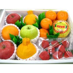 果物 母の日 果物 特選季節の フルーツセット お歳暮 プレ...