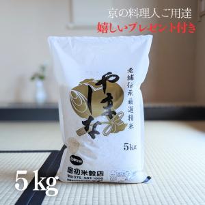 お米 5kg  老舗伝承厳選精米「やましな」令和元年産【3袋以上ご購入で送料無料】 yamasina