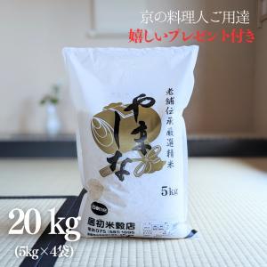 お米 20kg 老舗伝承厳選精米 「やましな」 令和元年産 5kg×4袋 yamasina