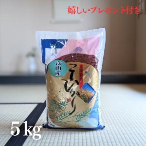 お米 5kg 富山県産こしひかり 令和元年産 白米5kg|yamasina