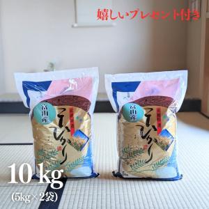 お米 10kg 富山県 コシヒカリ 令和元年産 白米 5kg×2袋|yamasina