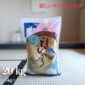 お米 20kg 富山県 コシヒカリ 令和元年産 白米 5kg×4袋|yamasina