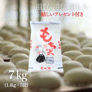 もち米 5升  滋賀県産羽二重もち米7kg(1.4kg×5袋)令和元年産|yamasina