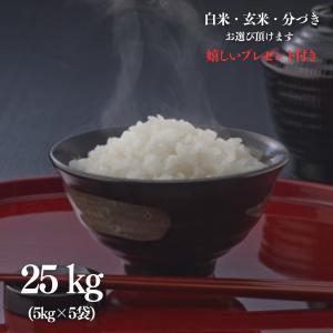 お米 25kg 滋賀県産 コシヒカリ 令和元年産 玄米5kg×5袋 選べる精米 ・無料小分け|yamasina