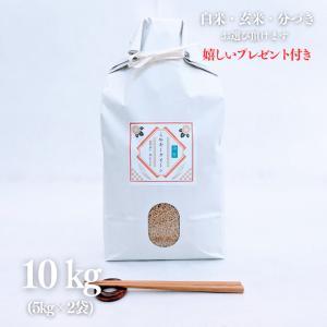 お米 10kg 契約栽培米 滋賀県ミルキークイーン 令和元年産 玄米5kg×2袋(白米4.5kg×2袋)|yamasina