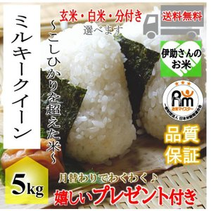 お米 5kg  契約栽培米 滋賀県ミルキークイーン 令和元年産 玄米5kg(白米4.5kg)|yamasina