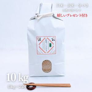 お米 10kg  朱鷺と暮らす郷 特別栽培米 新潟佐渡産こしひかり 令和2年産 玄米5kg×2袋   選べる精米|yamasina