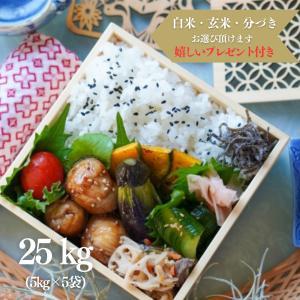 お米 25kg 特A  佐賀県 夢しずく 特別栽培米 令和元年産 玄米5kg×5袋 選べる精米 ・無料小分け|yamasina