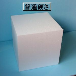 発泡スチロールかたまり(ブロック) 620mm×600mm×500mm 1個 普通硬さ yamatami
