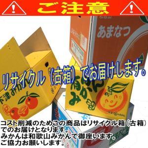 【予約開始】和歌山県産 訳あり みかん 大玉 (2Lサイズ以上) 10kg (傷あり サイズ不揃い )【送料無料】 *こちらの商品はリサイクル箱(古箱)でお届け。 yamatanet 04