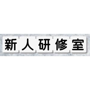 新人研修室ドアプレート サイコロ型 室名プレート 【183mmx35mm】 アクリル白色 室名札 ネ...