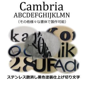 切り文字黒色 ステンレス3mm厚 切り文字表札 おしゃれな切り文字 黒色文字 書体【Cambria】|yamato-design