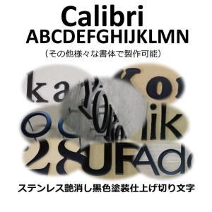 表札 おしゃれな切り文字黒色 ステンレス3mm厚 切り文字表札 黒色文字 書体【Calibri】|yamato-design