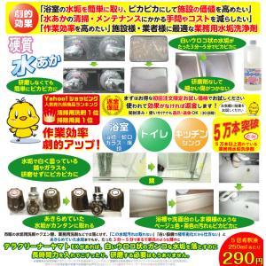 頑固な水垢取りにおすすめ 業務用水あか落とし洗剤 テラクリーナーヤマト 12本セット|yamatoayura|02