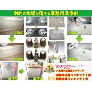 頑固な水垢取りにおすすめ 業務用水あか落とし洗剤 テラクリーナーヤマト 12本セット|yamatoayura|04