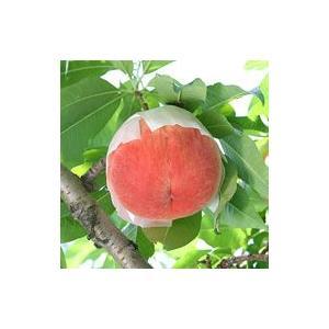山梨の桃「白鳳」6〜7玉約2kg入 御中元 ギフト 贈答用|yamatonouen|02