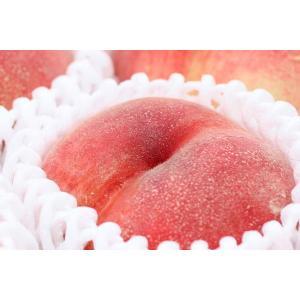 山梨の桃「川中島白桃」9〜10玉約3kg入|yamatonouen|03
